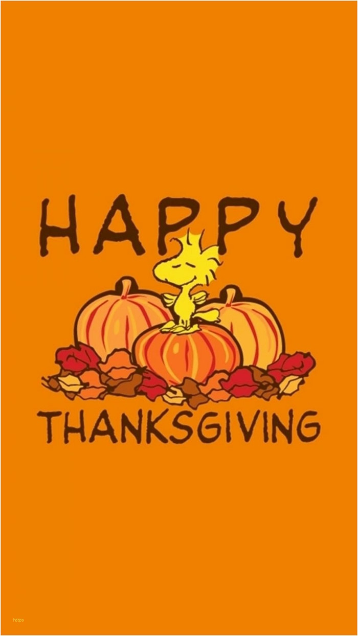 orange background happy thanksgiving written around drawings of pumpkins fall leaves background thanksgiving wallpaper