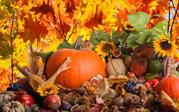 photo of arrangement with pumpkins pears apples corn grapes cute thanksgiving wallpaper fall leaves in the background