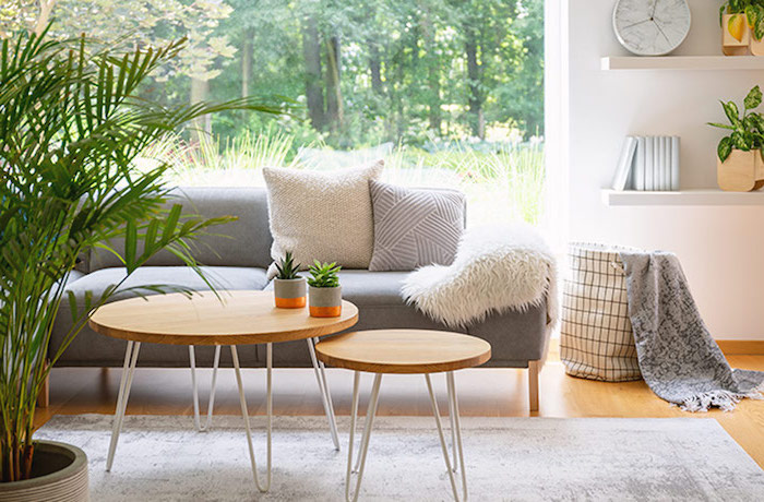 wooden round coffee tables in front of gray sofa scandinavian home decor carpet on wooden floor