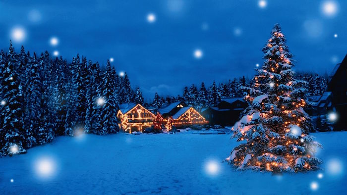 christmas tree with lights covered in snow outside large house christmas wallpaper surrounded by tall trees