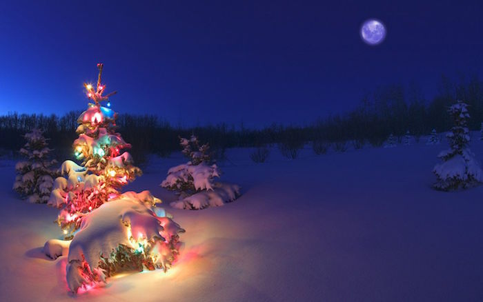 small tree covered with colorful lights and snow in the middle of field with small trees covered with snow