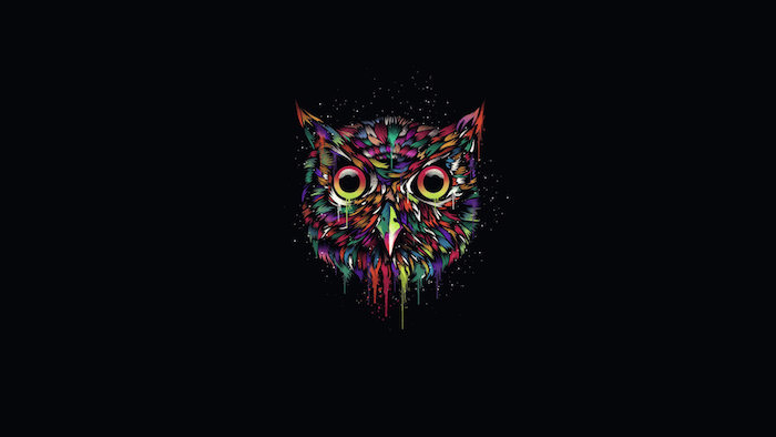 black background minimalist wallpaper colorful drawing of the head of an owl drawn in watercolor