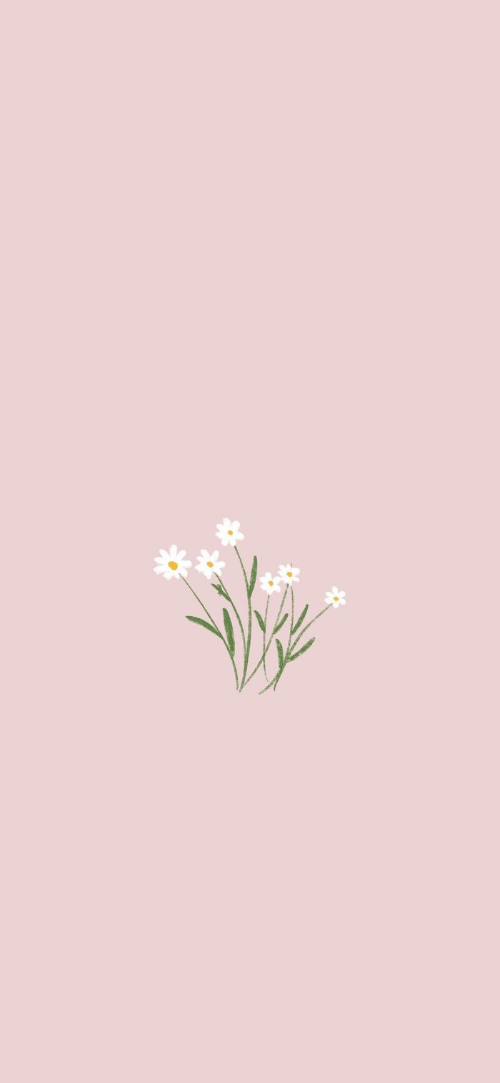 daisies drawn in the middle with green stems and leaves on pink background simple phone backgrounds