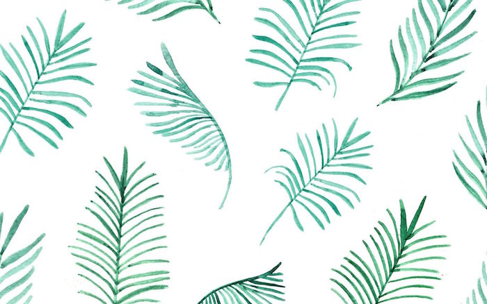 fern leaves drawn with white watercolor on white background minimalist iphone wallpaper