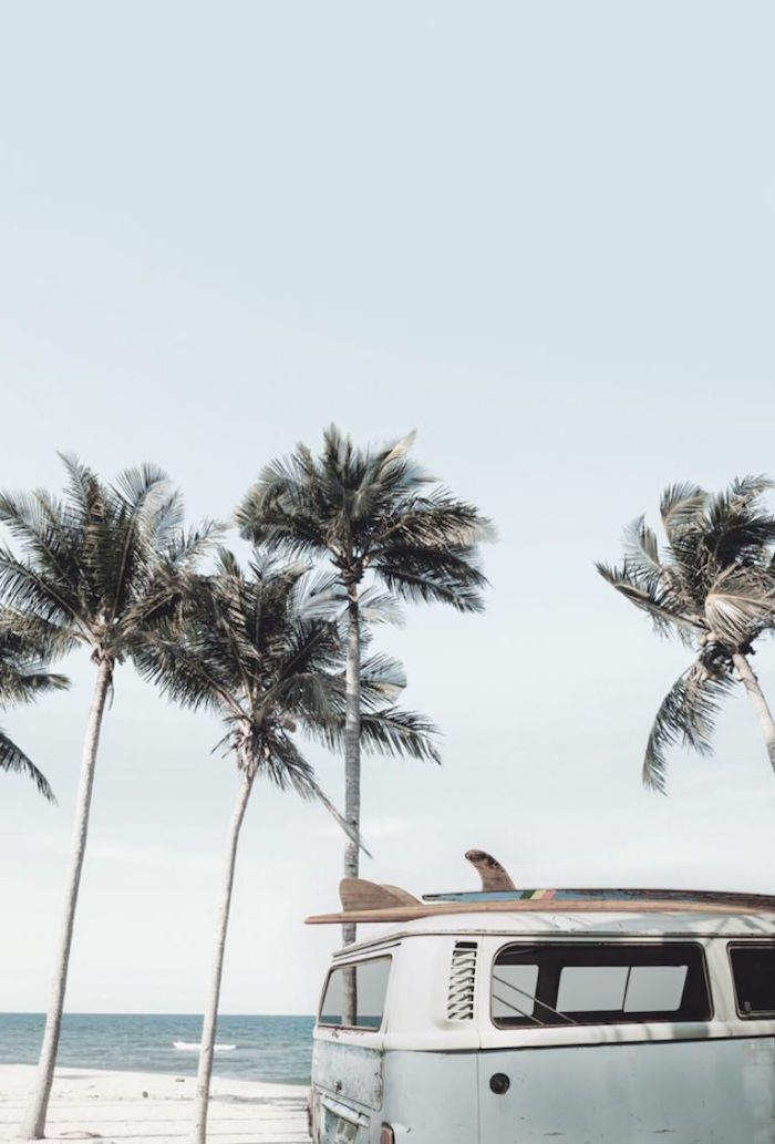 tall palm trees next to the beach 4k minimalist wallpaper old caravan with surf on the roof