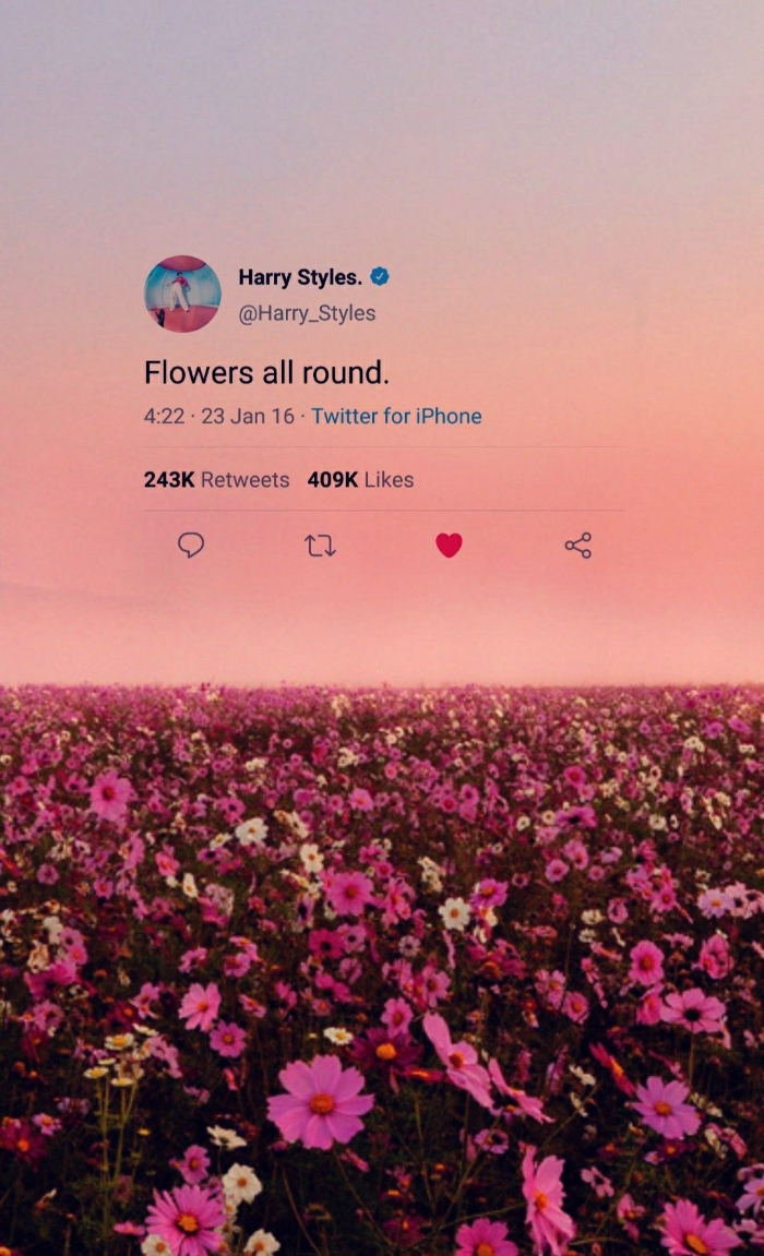 harry styles lockscreen tweet from him flowers all round over photo of field covered with purple and white flowers