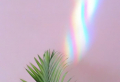 Pick a Rainbow Wallpaper to Bring Some Color Into Your Life