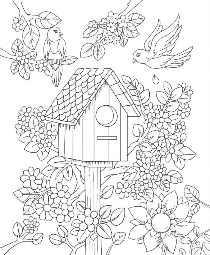 bird house surrounded by different flowers and birds flower coloring pages for kids