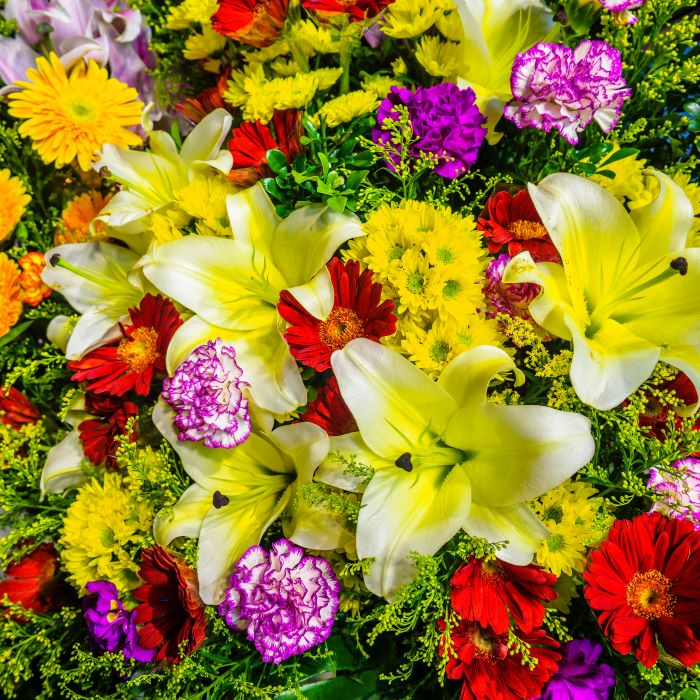 close up photo of flower bouquet flowers to give as gifts in yellow red green and purple flowers