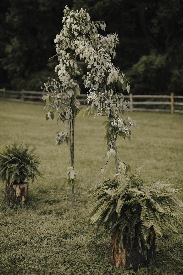 flower arch made with fern plants greenery and white flowers backyard wedding reception