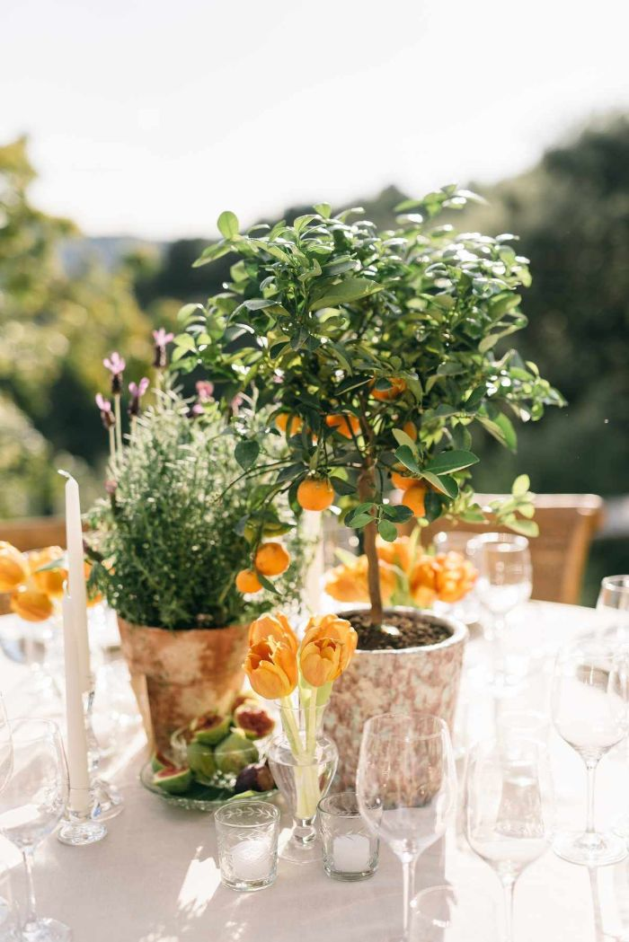 flower arrangements and mini lemon trees in the middle of the table outdoor wedding decorations wedding centerpiece