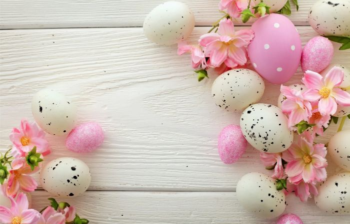 flowers and easter eggs in white and pink easter egg background arranged on white wooden surface