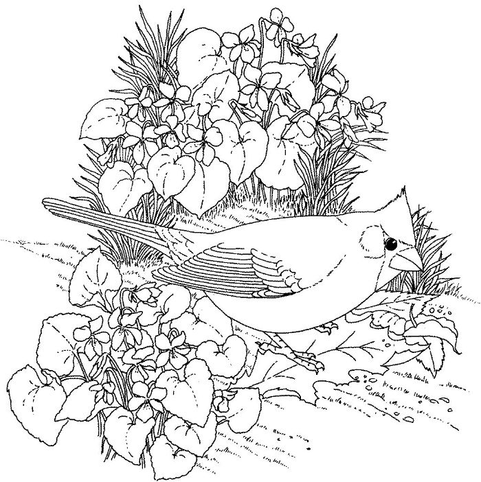 flowers and grass black and white drawing flower coloring pages for kids bird standing on a leaf