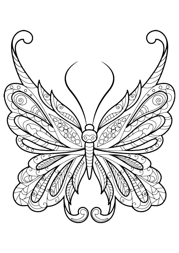 free coloring pages for girls black and white drawing of butterfly with patterns on the wings