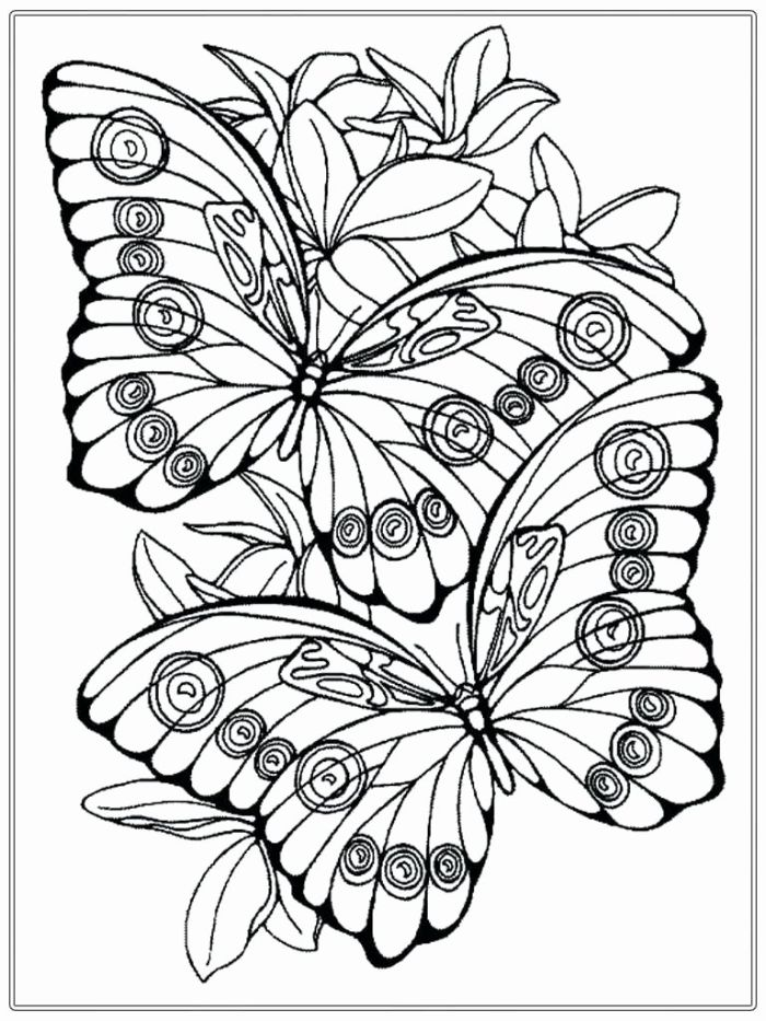 free printable spring coloring pages black and white drawing of two butterflies surrounded by flowers