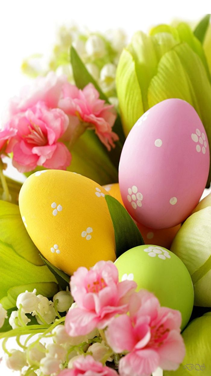 green yellow and purple eggs with white flowers on them easter background images placed in a basket with flowers