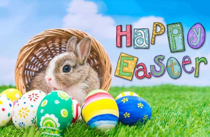 happy easter written next to photo of bunny sitting in basket easter egg background decorated easter eggs around it