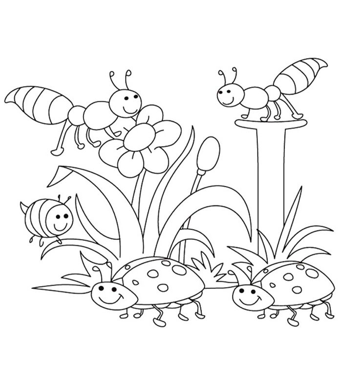 ladybugs and ants surrounding flowers free printable spring coloring pages black and white drawing