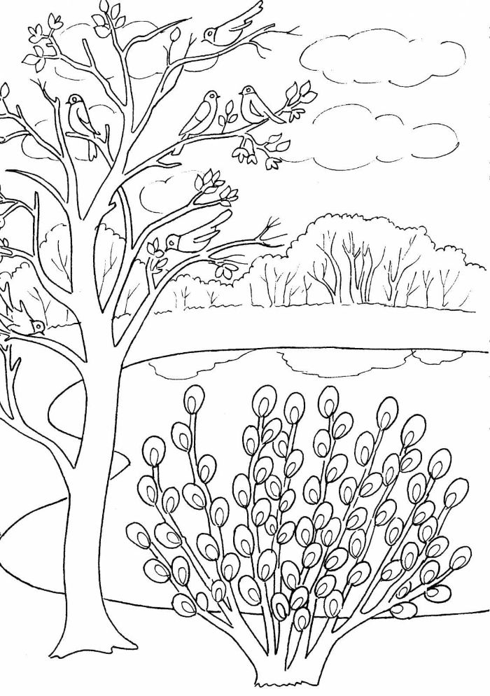 1001 Ideas For Spring Coloring Pages To Keep You Entertained