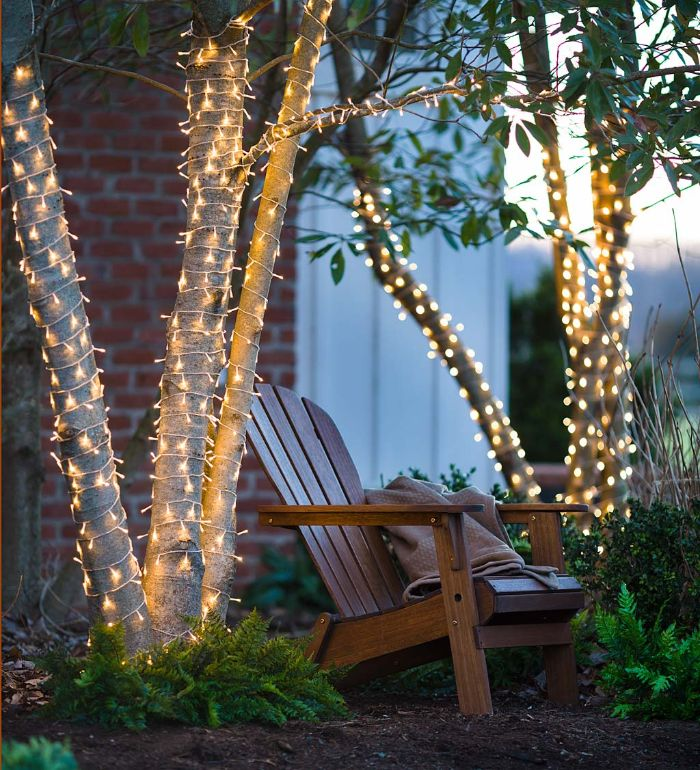 chair in between two trees outdoor hanging lights trunks wrapped with fairy lights fern plants around them