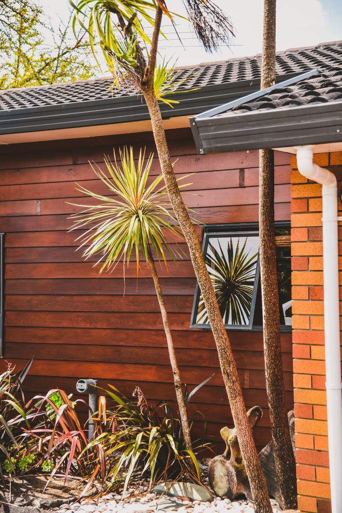 one storey house with wood siding on one wall bricks on the other home siding palm trees