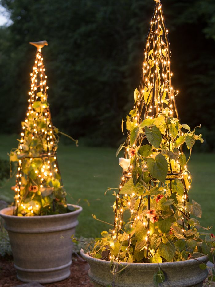 outdoor hanging lights two planters with poison ivy metal construction around it wrapped with fairy lights