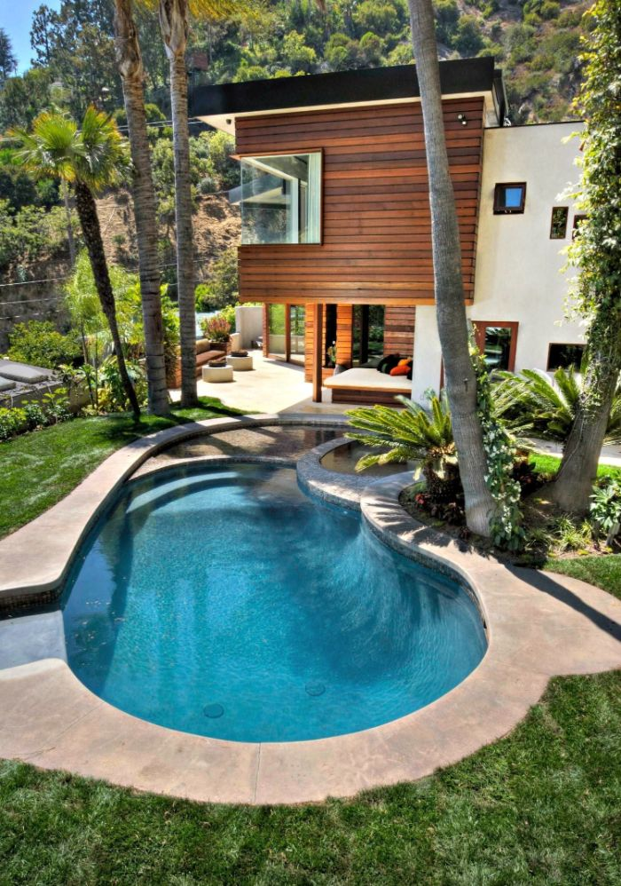 palm trees and bushes in back yard small inground pools free flow pool with wooden lounge bed