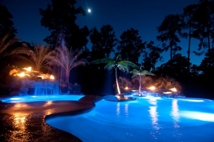 small backyard pool ideas free flow pool with lots of lights palm trees around it