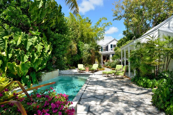 small pool surrounded by tall trees bushes flowers backyard pool ideas green garden furniture