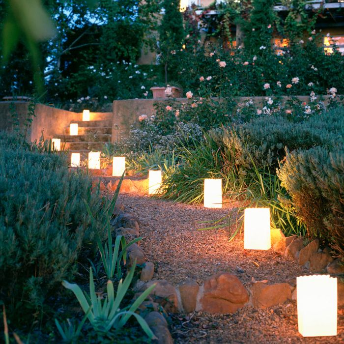 solar led lamps arranged next to flower beds backyard string lights along the pathway