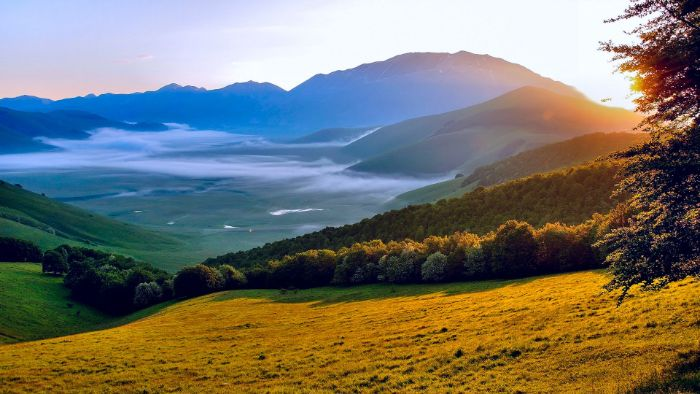 beautiful iphone wallpaper sunrise over mountains with tall trees fog in the distance