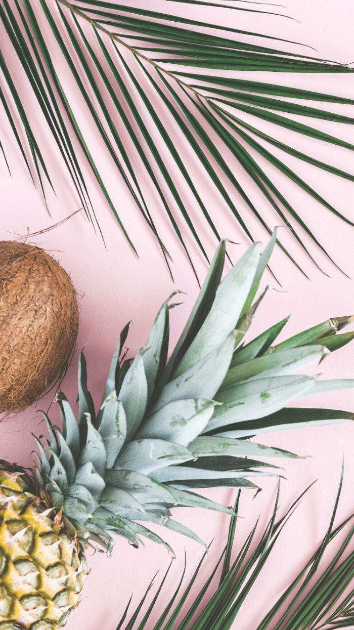 green palm tree leaves coconut pineapple cute summer backgrounds placed on pink surface