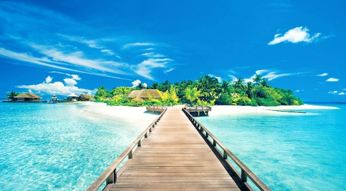 pathway made of wood leading to island with small huts summer wallpaper palm trees
