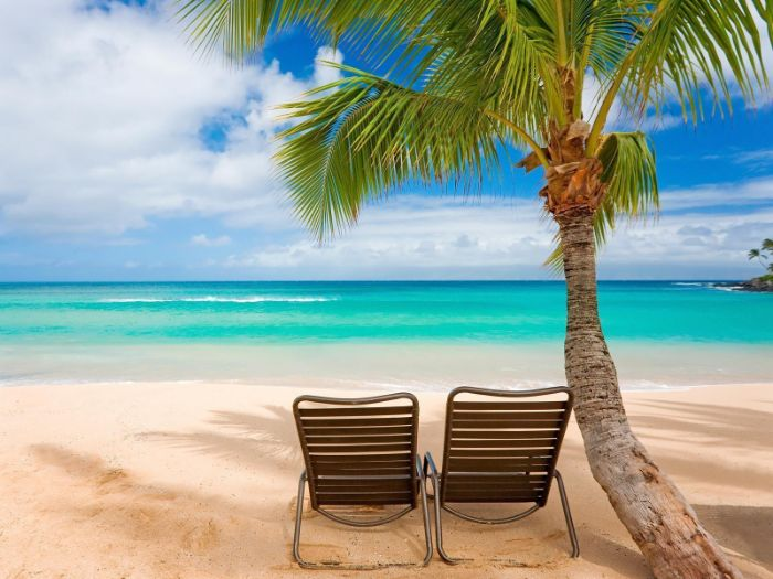 summer wallpaper two wooden lounge chairs placed on beach under palm tree