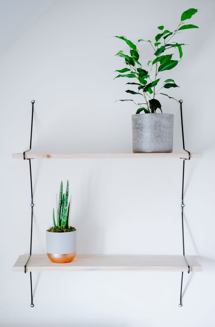 wooden shelves hanging on white wall with two plants on them décor ideas for living room