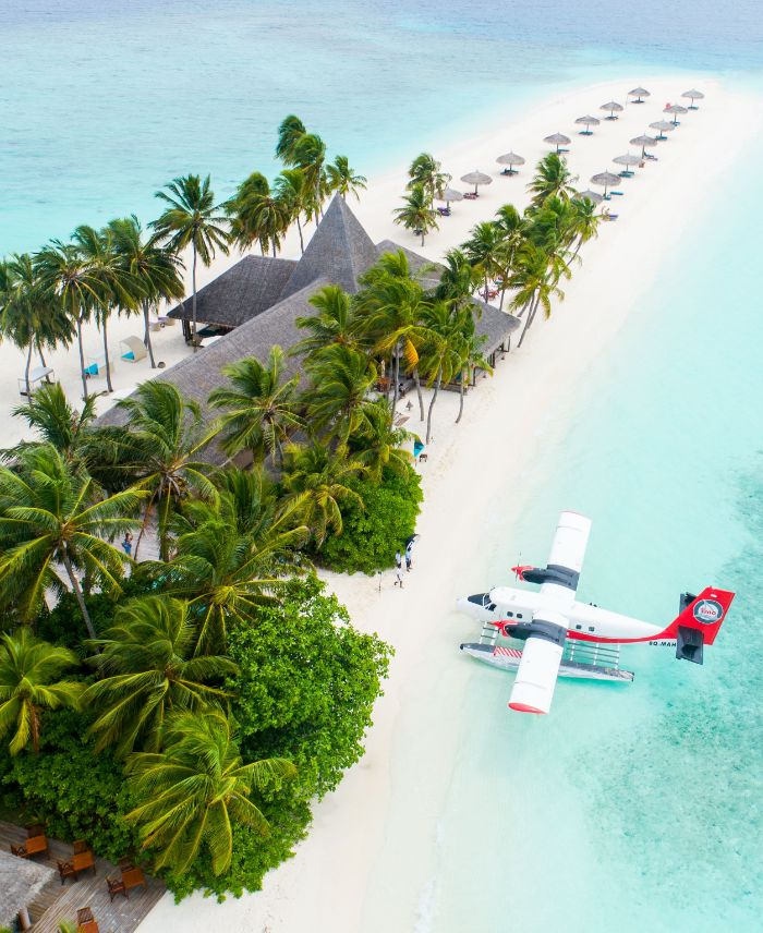 aerial view of plane landing in the clear turquoise water on white sandy beach next to house with palm trees beach background images