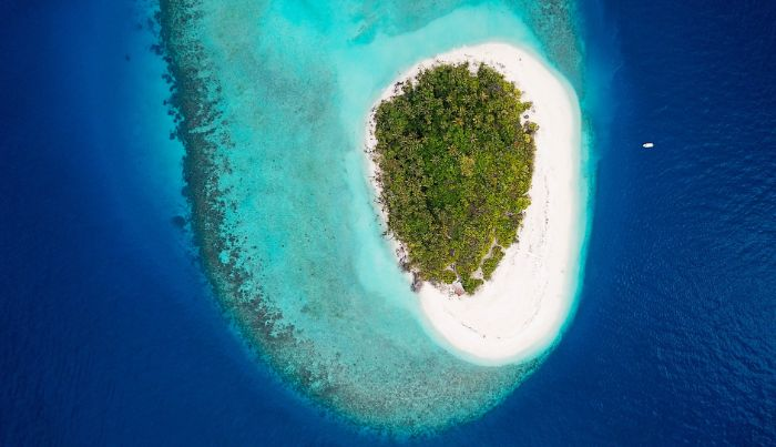 aerial view of small island with white sand lots of trees in the middle surrounded by blue water beach aesthetic
