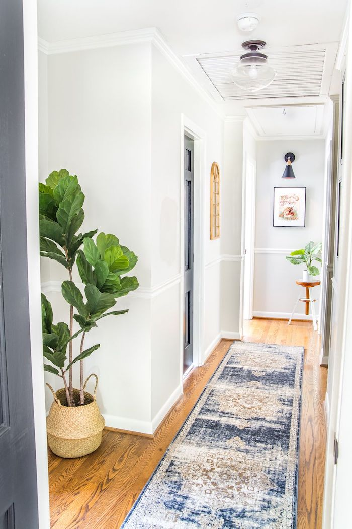 blue vintage rug on wooden floor hallway wall decor ideas blue door with white walls potted plants