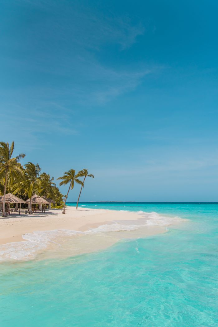 clear turquoise water beach with white sand beach background iphone huts and palm trees on the beach