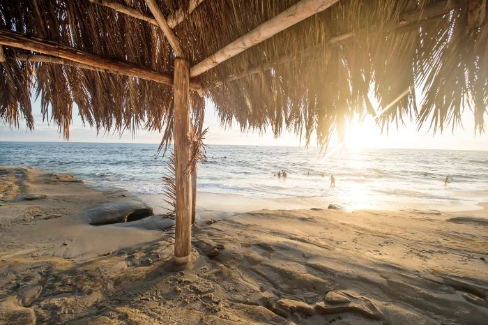 hut made of dried palm leaves beach aesthetic people swimming in the ocean