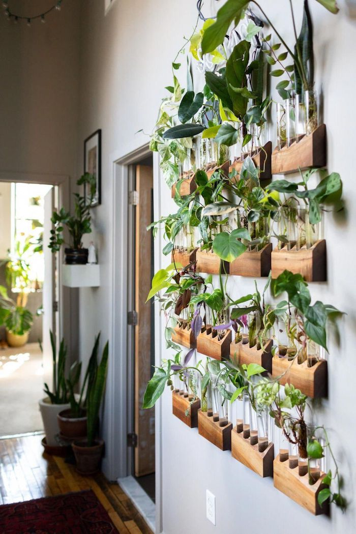 plants hanging from wall mounted wooden pots hallway decor ideas gray wall other potted plants along the hallway