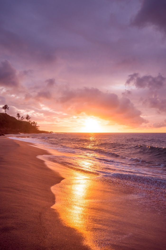 sunset photo of waves crashing into the beach beach background hd tall palm trees on rock going into the water