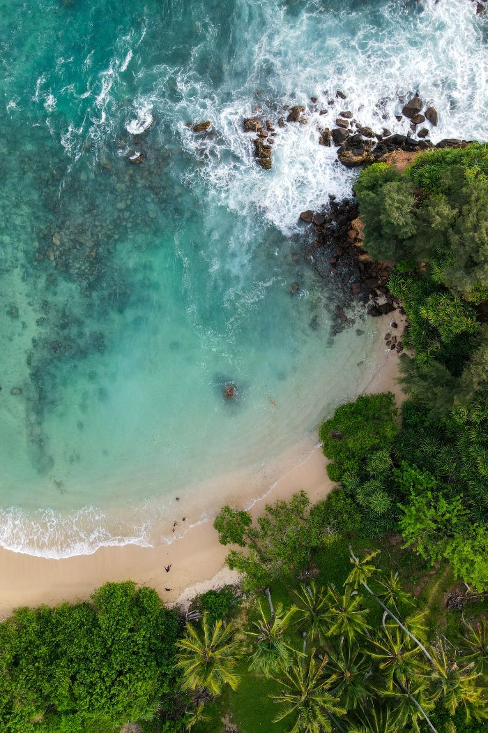 waves crashing into beach rocks surrounded by trees and palm trees beach background images