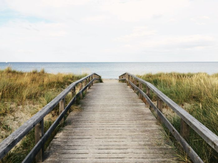 wooden pathway leading to the beach surrounded by shrubs beach aesthetic wallpaper ocean in the distance