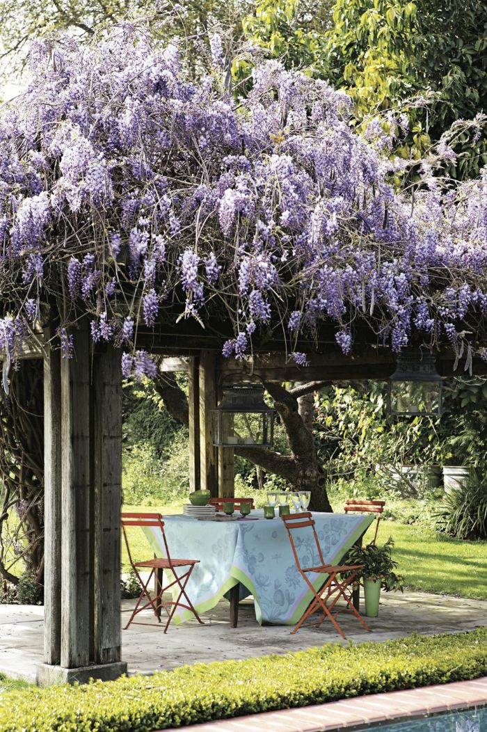 flowers covering wooden pergola dining area underneath backyard patio ideas on a budget four wooden chairs