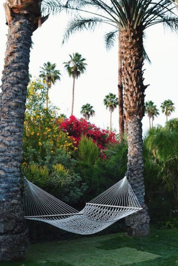 hammock hanging from two tall palm trees backyard patio designs lots of trees and flowers