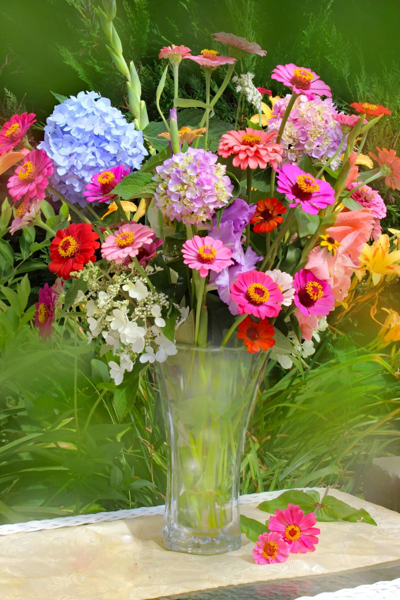 lots of different flowers send flowers pink blue orange red flowers