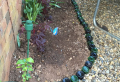 How to recycle materials and create garden edging for your backyard