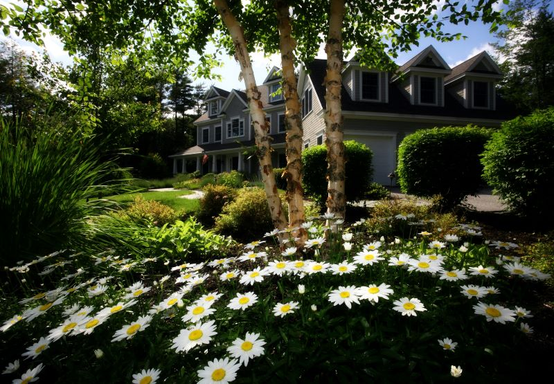 landscape design boost the value of your home