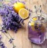 lavender tea lavender plant care glass jar